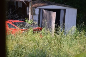 One of the outbuildings with weeds taller than the car...